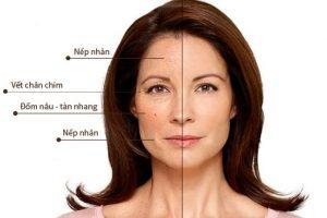 vitamin c cải thiện quá trình lão hóa